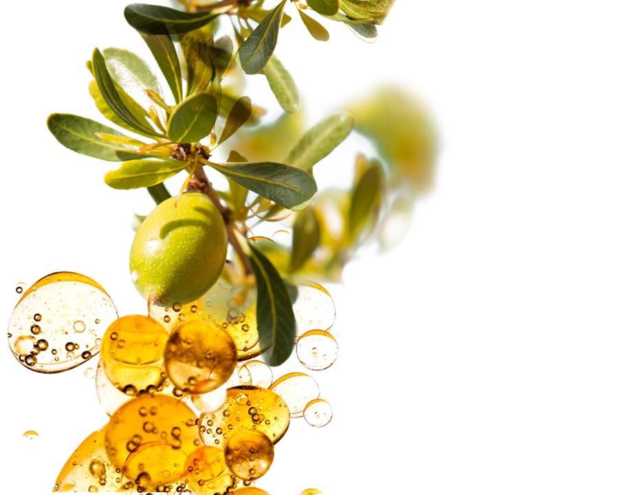 Imagini pentru olio di oliva